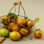 Eugenio Garcia - Orange Basket
